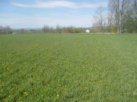 Harvest Lane Ferrisburgh VT 05473