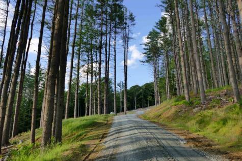1 Carlton Hill Road Woodstock VT 05091