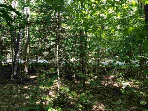 Lot 136 Bear Road Haverhill NH 03765
