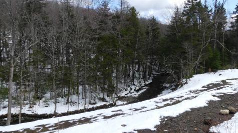 66 Cheney Brook Loop Road Dover VT 05356