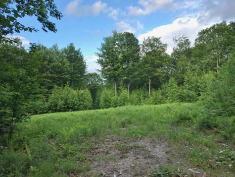 553 Gird Lot Road Weathersfield VT 05156