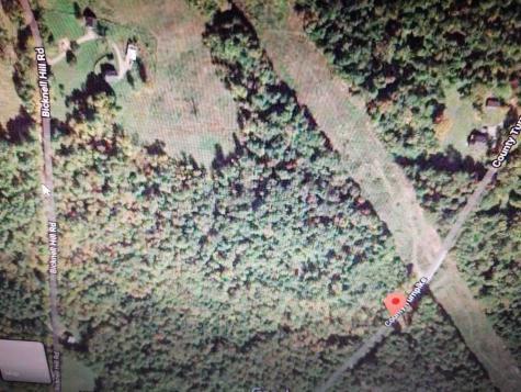 County Turnpike Road Tunbridge VT 05077