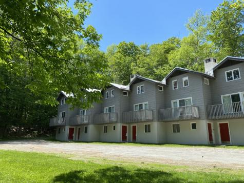 41 Birch Hill Road Winhall VT 05340
