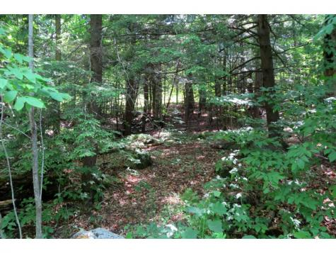 145 Old 5A Westmore VT 05860