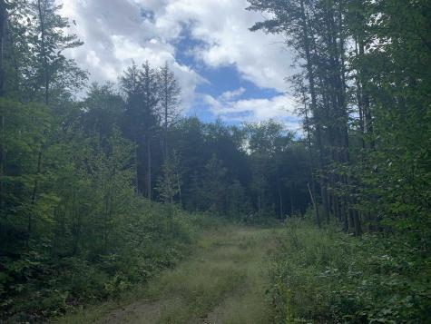 R12,Lot 27 Currier Road Hill NH 03243