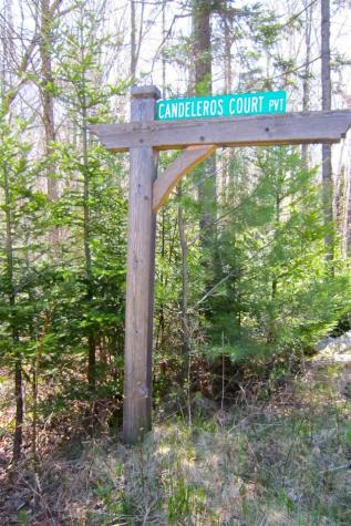 Candeleros Court Ludlow VT 05149