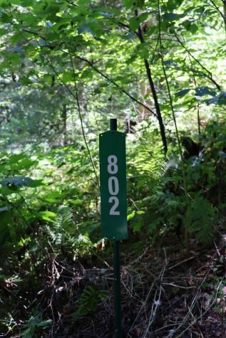 802 Perley Brown Road Cavendish VT 05142