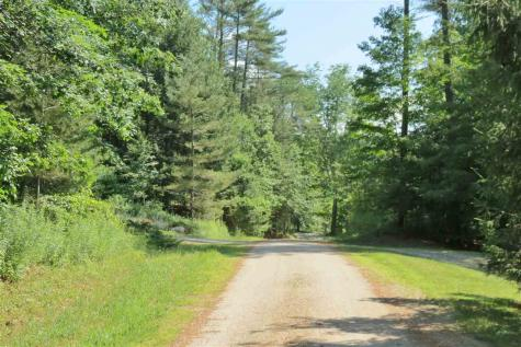 Birch Lane Ludlow VT 05149