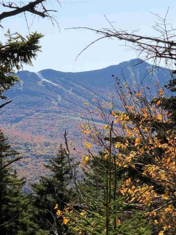 Little Sherburne Road Killington VT 05751