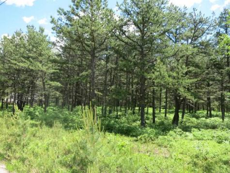Lot 40 Moores Pond Madison NH 03849