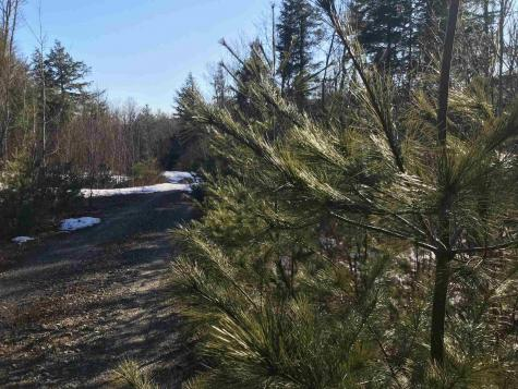 455 Bog Road Hillsborough NH 03244