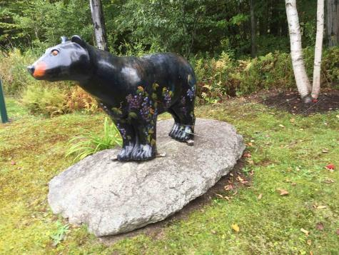 5D Black Bear Dover VT 05356
