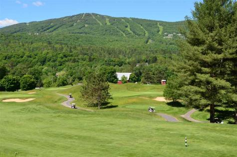 Lot 4 Route 100 North Ludlow VT 05149