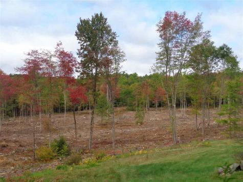 Lot 4 Wiggin Road Danbury NH 03230