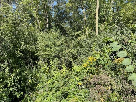 TBD Delong Lane Shoreham VT 05770