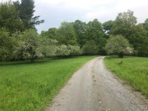 677 Buck Hollow Road Fairfield VT 05455