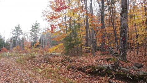 Lot 8-4-1 Chandler Hill Road Campton NH 03223