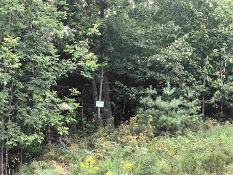 #55 Mountain Shadows Road Tuftonboro NH 03816