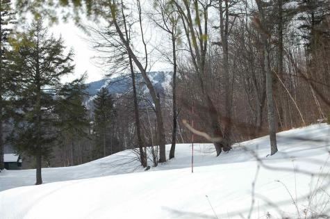 691 Indian Paint Brush Road Winhall VT 05340