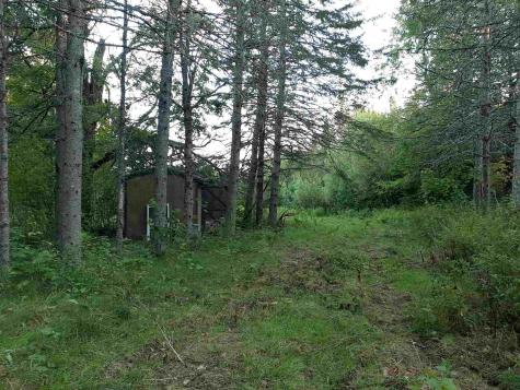 - Reed Road Colebrook NH 03576