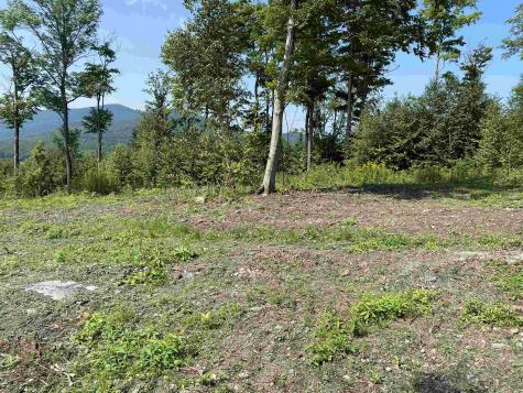Lot D Old Maple Lane Danby VT 05739