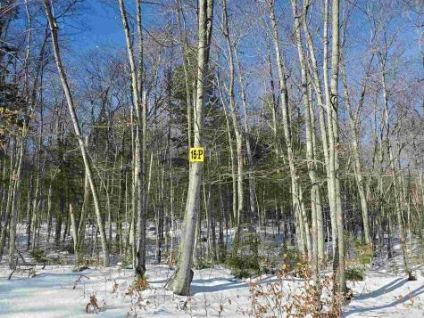 Lot 15 P Buzzell Ridge Road Sandwich NH 03227