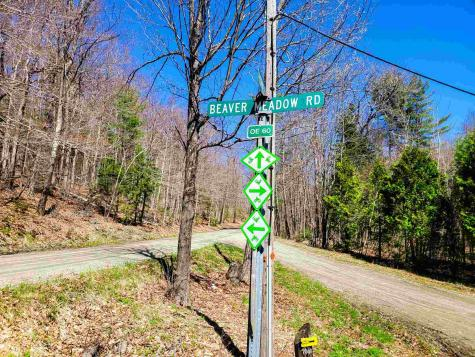 810 Beaver Meadow Road Roxbury VT 05669