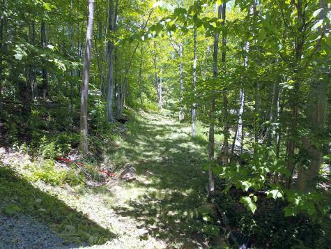 576 Trailside Road Ludlow VT 05149