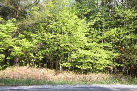 Lot 2 West Jamaica Stratton VT 05360