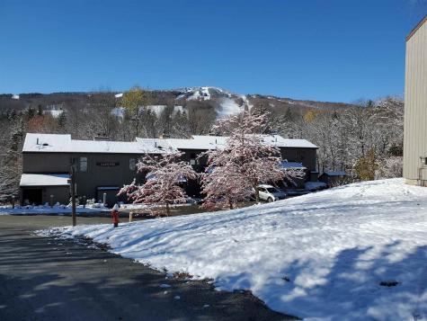 17D Snow Tree Lane Dover VT 05356
