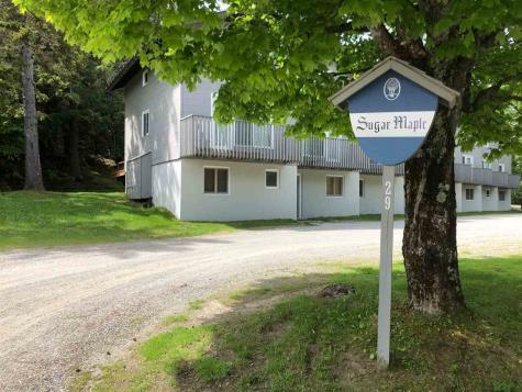 3 Birch Hill Road Winhall VT 05340