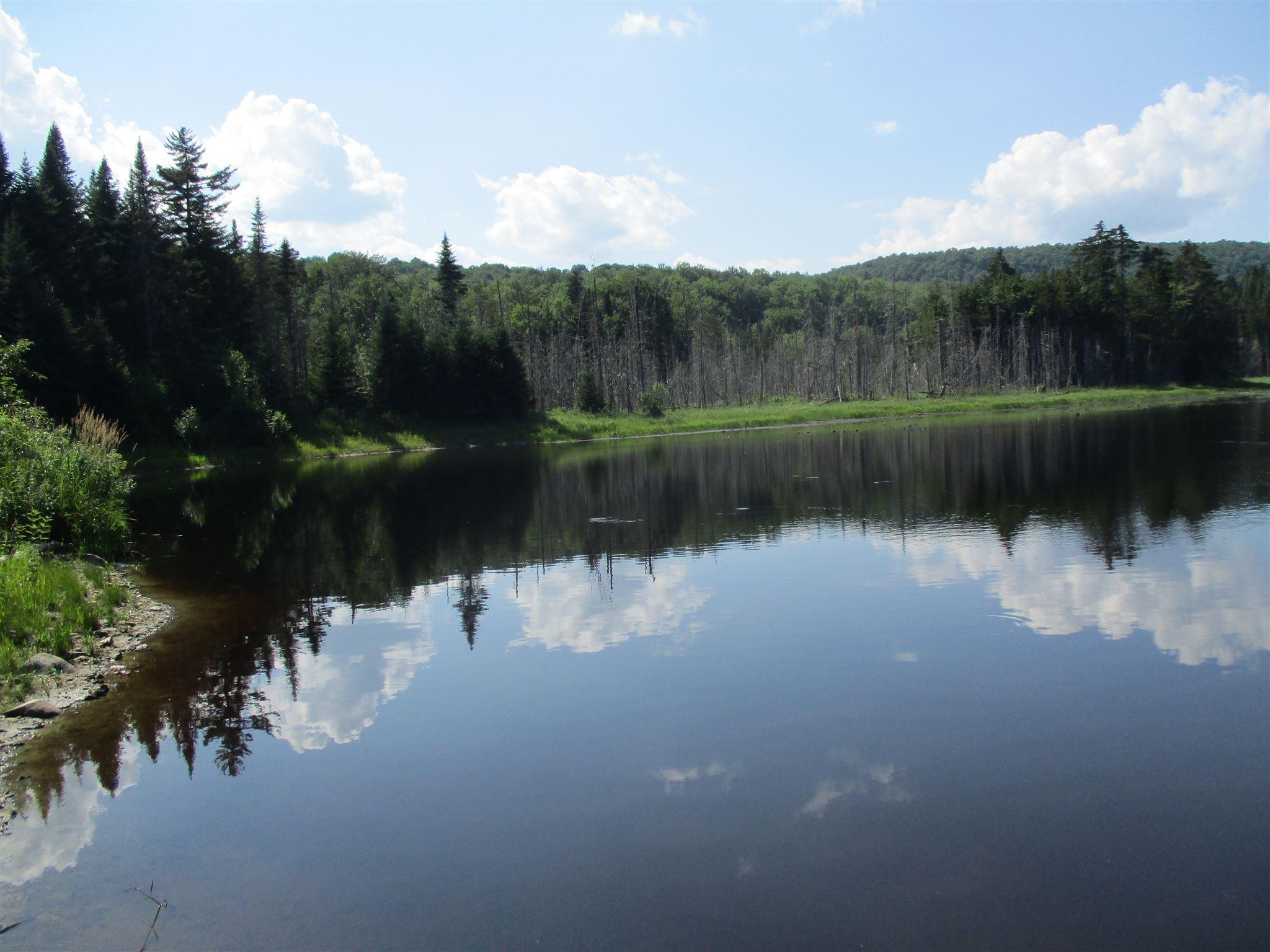 Mud Pond Braintree VT 05060