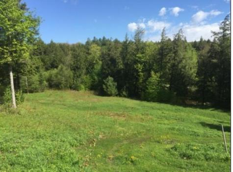 2285 Sterling Valley Road Morristown VT 05661