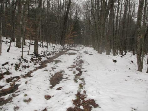 Off Plot Road Johnson VT 05656