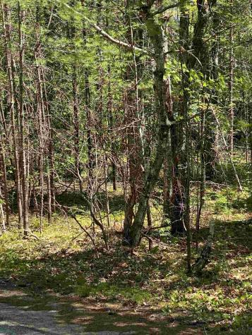 Lot 14 Chapel Conway NH 03860