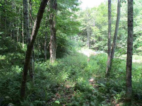 Twin Ponds Brookfield VT 05036