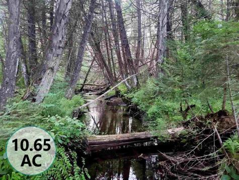 3651 LynBurke Road Sutton VT 05867