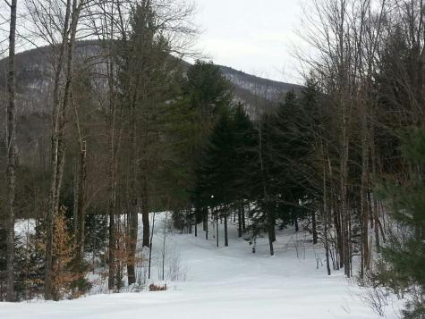 191 Bombadil Path Pittsfield VT 05762