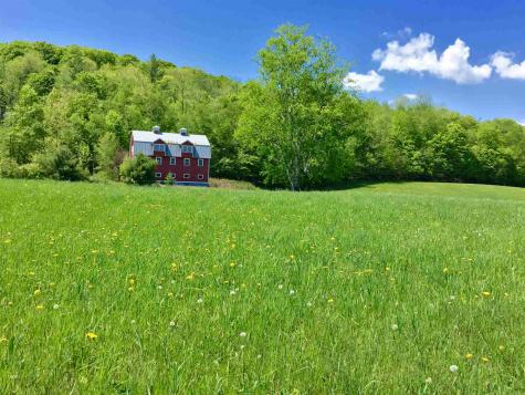 1122 Peterkin Hill Woodstock VT 05091