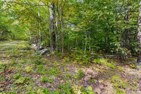 Lot 7 North Wilmot Road Wilmot NH 03287