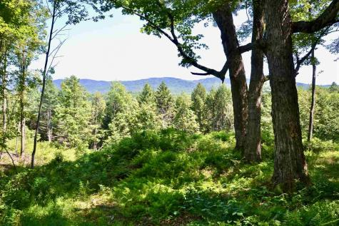 Lot 5 Guptil Road Waterbury VT 05677