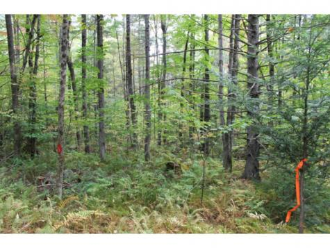 Lot 5D Bix Road Stockbridge VT 05772