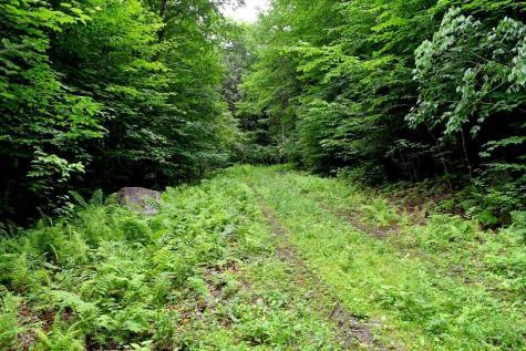 445 Moss Brook Road Peru VT 05152