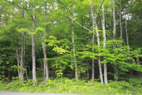 Lot 5 Handle Road Dover VT 05356