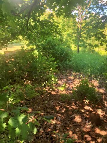 Pine Hill Derby VT 05829