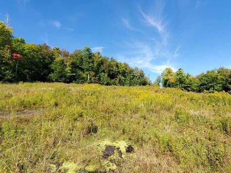 1333 Whites Hill Road Wardsboro VT 05355