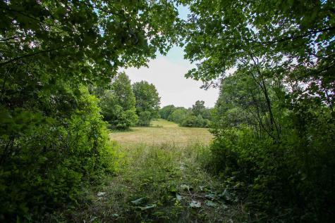 52 Pond Lane Ferrisburgh VT 05473