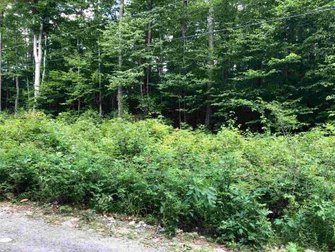 36 Tom's Cabin Road Dover VT 05356