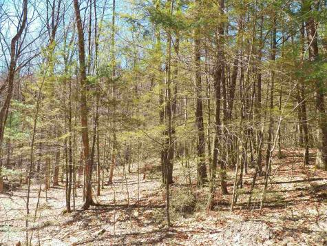 85-5-0 Cobble Hill Road Swanzey NH 03446