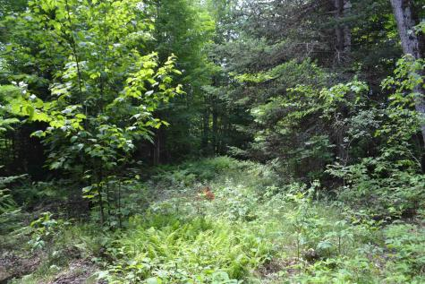 Lot 2 North Street East Montpelier VT 05651